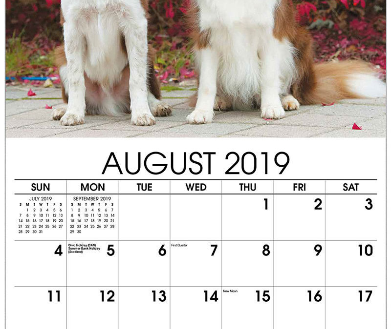 We Want Your Pets for the 2019 Pet Calendar!